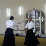 bo-jutsu - premier kata